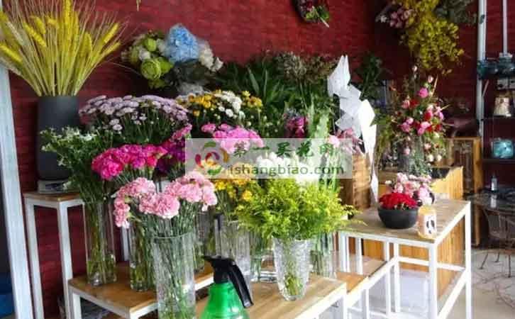 秦皇岛开发区青馨家园院威廉希尔公司手机app