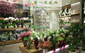 <a href='http://www.1shangbiao.com/2794baiyinxianhuasudiwang/' title='白银花店'><b>白银</b></a>市<a href='http://www.1shangbiao.com/2794baiyinxianhuasudiwang/' title='白银花店'><b>白银</b></a>区公园路花店门店照