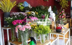 <a href='http://www.1shangbiao.com/2794baiyinxianhuasudiwang/' title='白银花店'><b>白银</b></a>市<a href='http://www.1shangbiao.com/2794baiyinxianhuasudiwang/' title='白银花店'><b>白银</b></a>区公园路花店备货