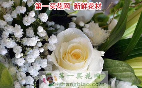 广州花店备货
