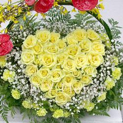 30枝黄玫瑰/留在我心里