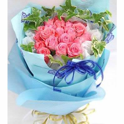 22枝粉玫瑰/梦想成真
