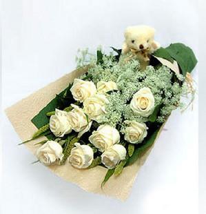 白玫瑰11支/喜欢你