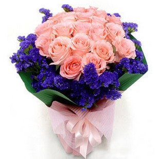 21朵粉玫瑰+勿忘我/芳华