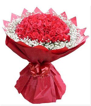 66枝红玫瑰/情相依