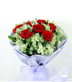 9枝红玫瑰/爱你