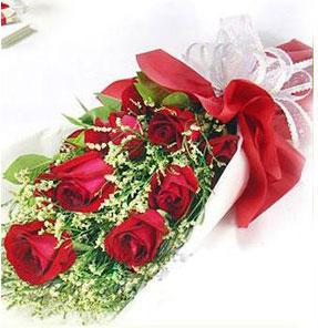9朵玫瑰/爱的祝福