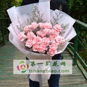 19朵粉色康乃馨