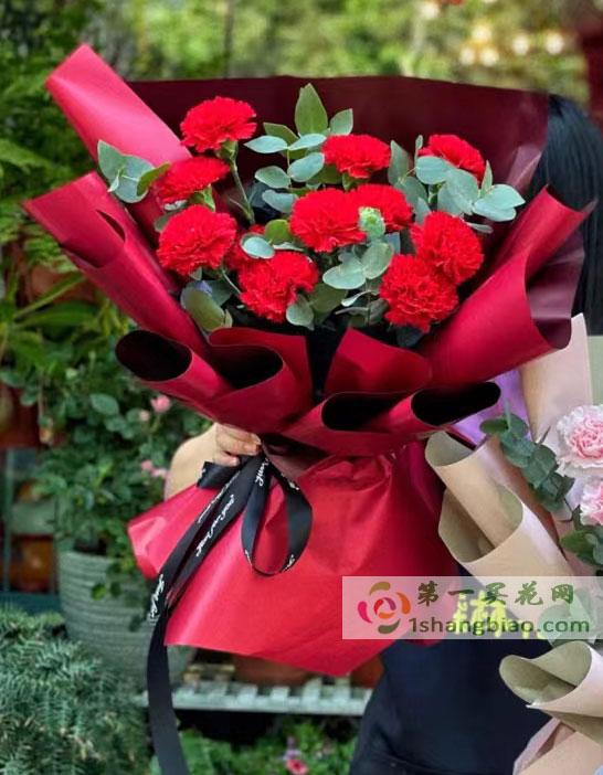 母亲节之花11红康